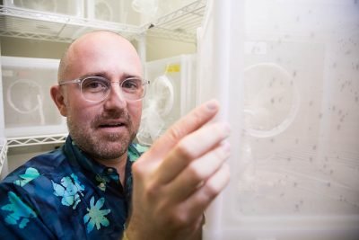 Florida scientists take aim at Zika with launch of new center