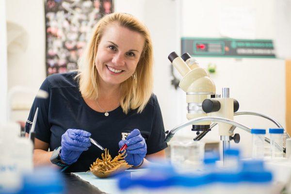 FIU marine sciences professor Heather Bracken-Grissom