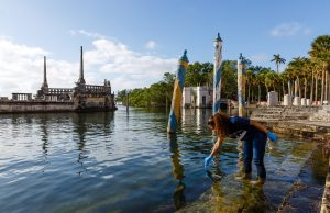 Citizen scientists bolster sea level research on King Tide