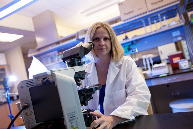 FIU researcher honored for study of DNA and male infertility