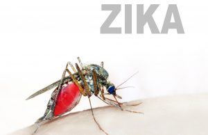 Researchers patent fast, accurate technology for early Zika detection