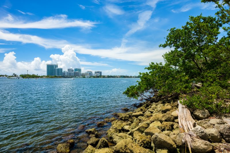 south florida s natural ecosystems can provide affordable protection
