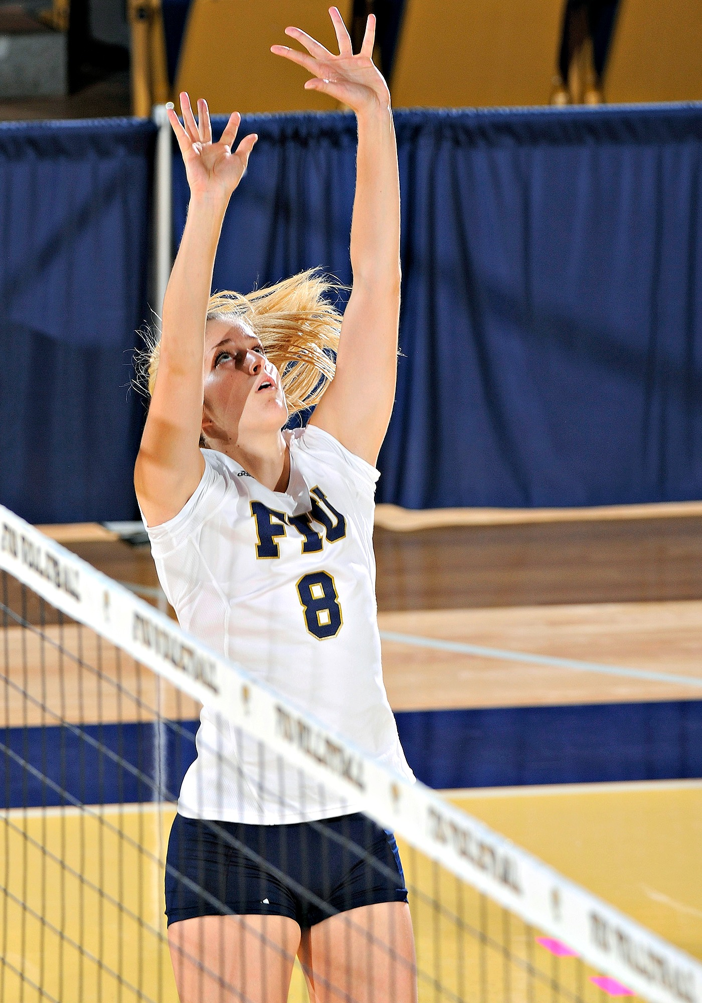 Anabela Sataric has made an immediate impact as a setter for FIU in her freshman season. (Photo courtesy of ???)
