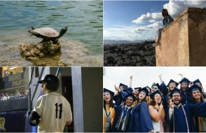 May 2017 in photos: Yoga turtle, commencement, study abroad