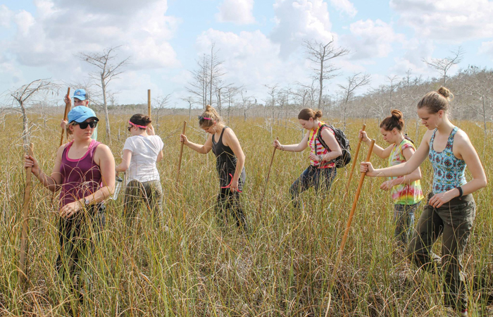Students from Concordia College tour the Everglades National Park while visiting FIU and South Florida.