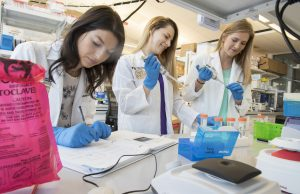 Medical students study tampons as possible screening test for cancer