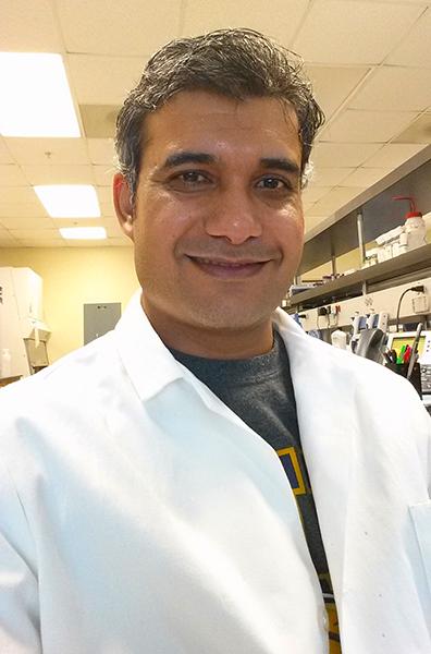 Ajeet Kaushik, Ph.D.