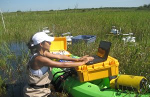 FIU scientists have been working in the Everglades for decades, providing baseline data and research to advance management, restoration and conservation efforts of the fragile ecosystem.