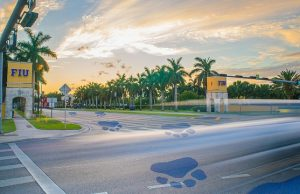 FIU Police to begin enforcing pedestrian safety with fines