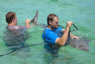Mike Heithaus, left, tags a guitarfish in Shark Bay, Australia.