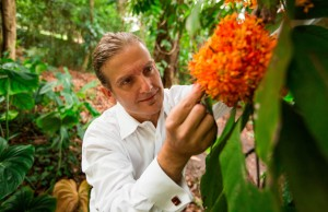 Christopher Baraloto, director of the International Center for Tropical Botany, a collaboration between FIU and the National Tropical Botanical Garden, examines a flower at The Kampong in Coconut Grove, Fla.