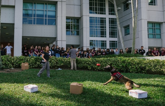High School Student Forensic Academy attendees participate in a K-9 training demonstration outside of the FIU Green Library.