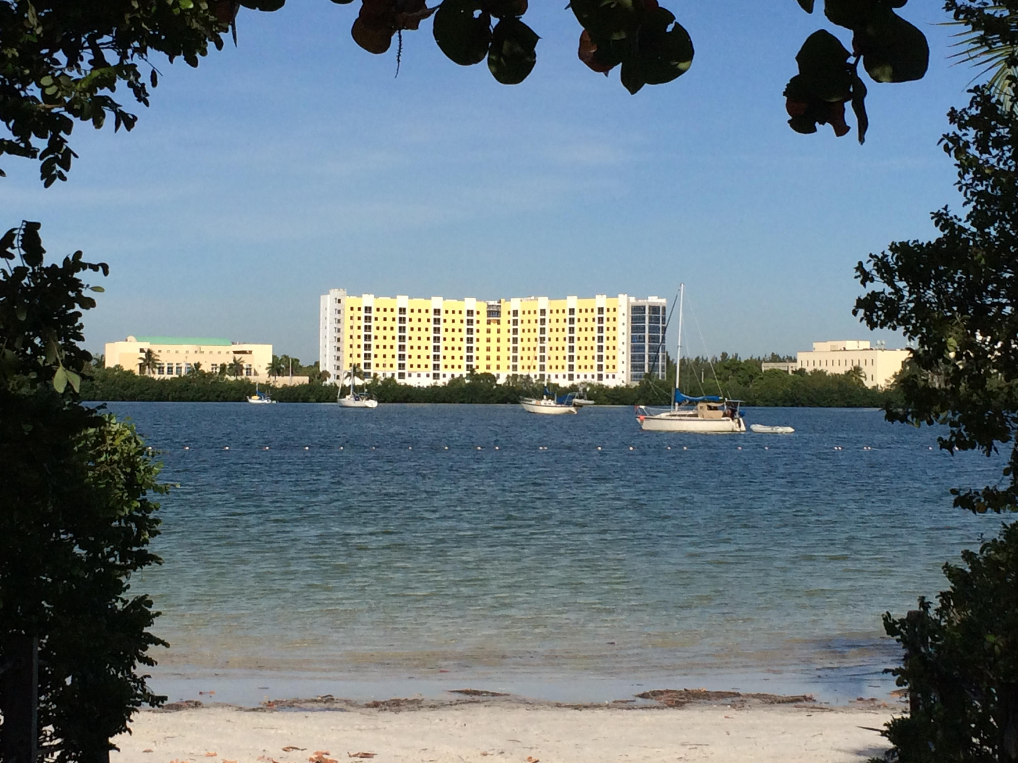 Bayview Student Living At Fiu To Debut In August