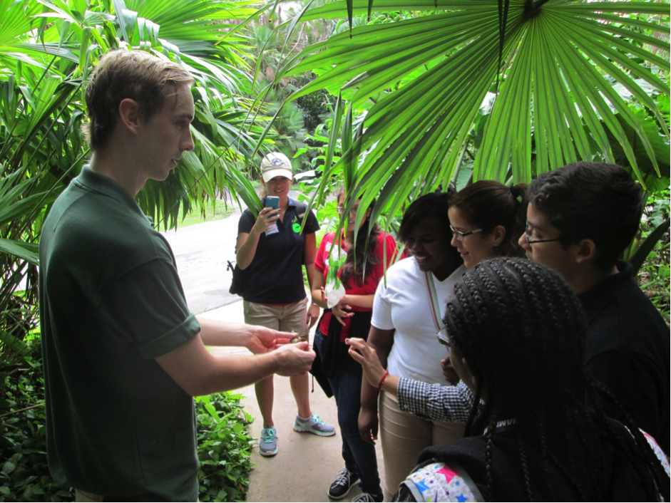 FIU biologist James Stroud (left) is training middle school students to collect information on anole lizards.