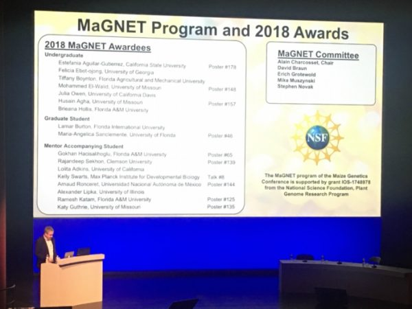 MaGNET Program and Awardees announced at the 2018 Maize Genetics Conference.