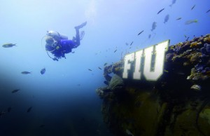 Mike Heithaus takes a swim with a grouper outside of FIU Aquarius Reef Base, the world's only undersea research lab.