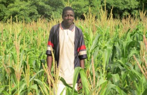 Nikiema Moustapha has successfully implemented Climate Smart Agriculture techniques in his corn field in the village of Tama, Burkina Faso.