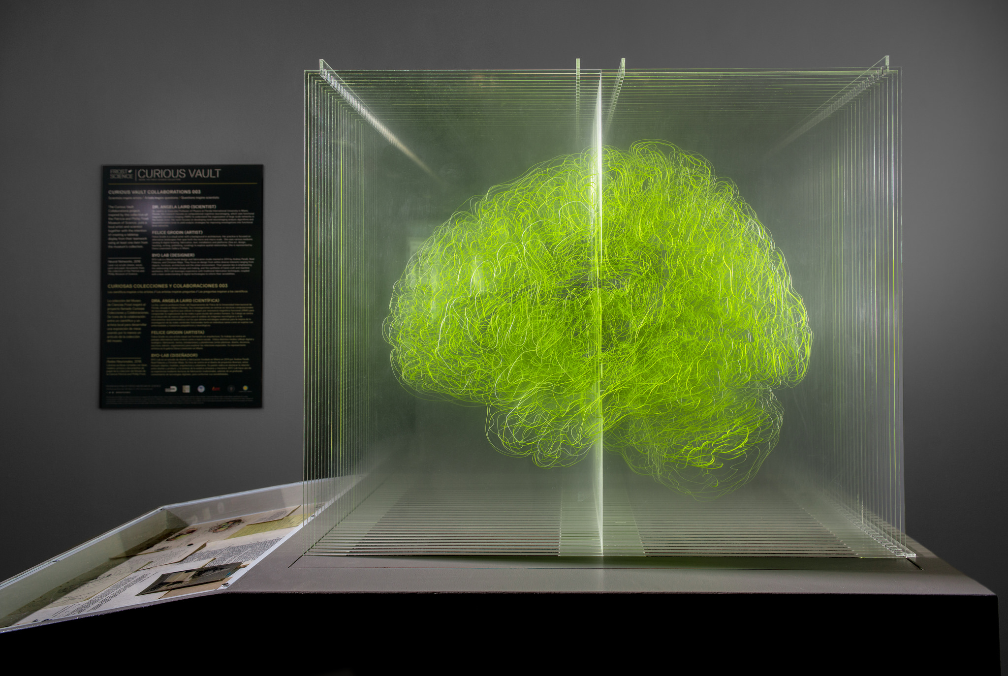 Architect, physicist create art from brain images