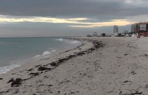 Watch journalism professors' documentary on South Florida sea level rise