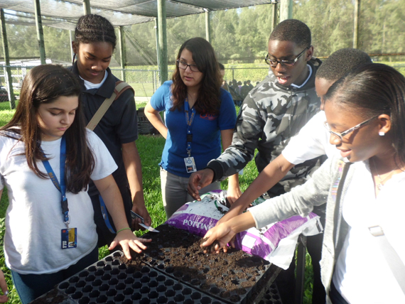 MAST@FIU students plant the seeds to the future of state park butterfly garden