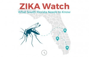 Zika now in Florida: What you need to know