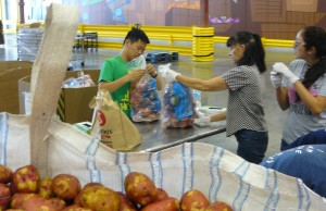 Students sorted through 5,000 pounds of potatoes to create 150 20-pound bags that would be delivered to area soup kitchens and food pantries.