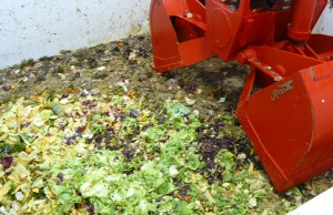 Food scraps that will be converted into energy at Harvest Power Plant at Walt Disney World.