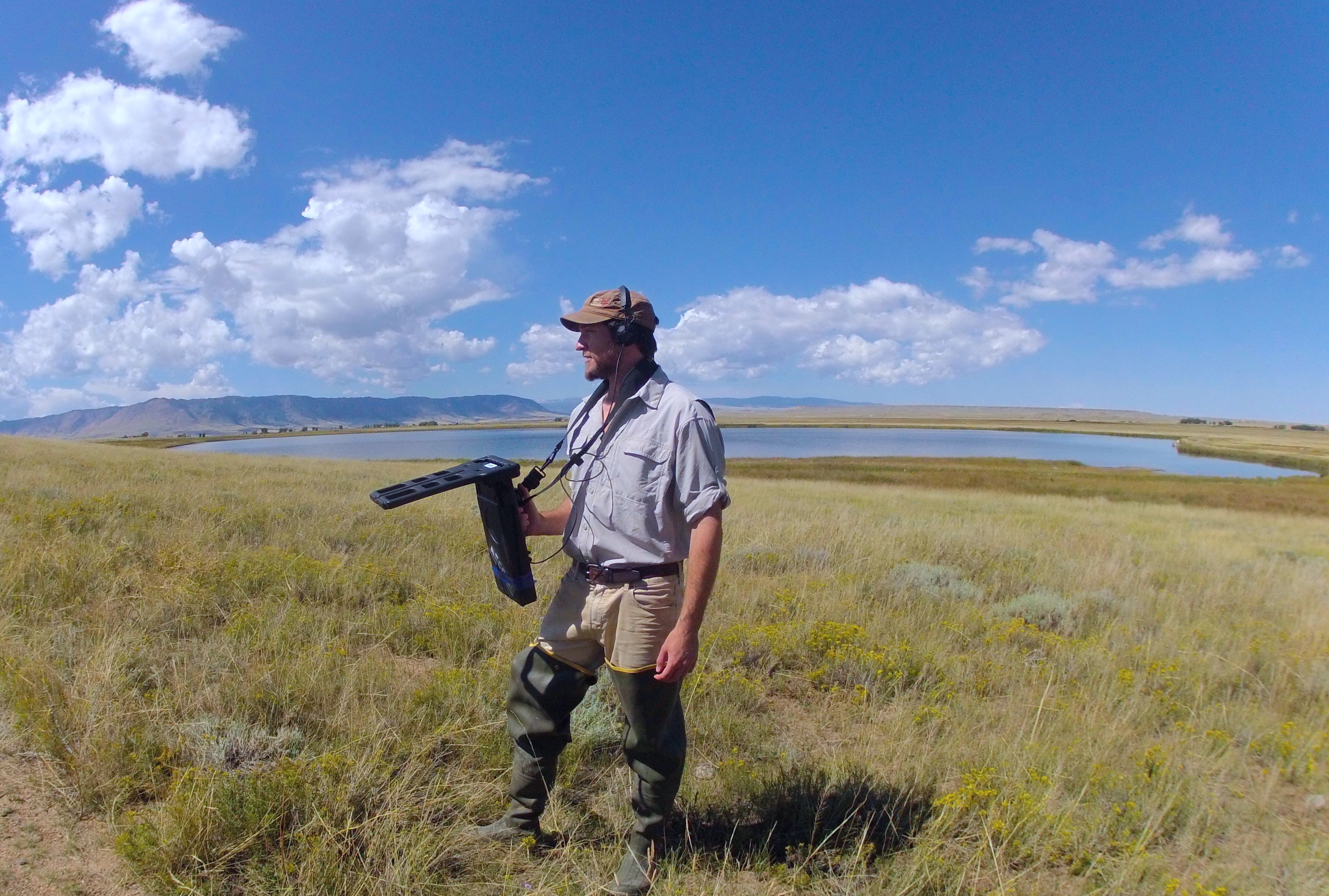 FIU biology student Luke Linhoff tracks endangered Wyoming toads in the Mortenson Lake National Wildlife Refuge.