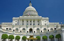 Law students spend summer interning in the nation's capital