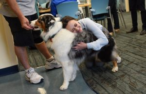 Therapy dogs help medical students de-stress during finals