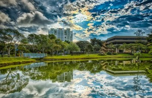 Editor's picks for Best of FIU Magazine 2013