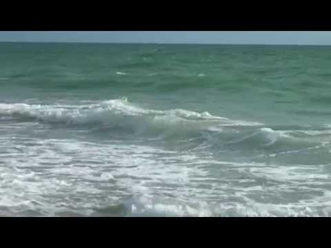 Student-produced documentary on sea level rise to premiere on WPBT2