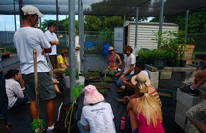Agroecology Program to award more than $330,000 in scholarships