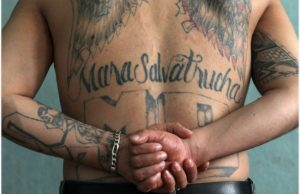 MS-13 is considered one of the most violent youth gangs in the Western Hemisphere.