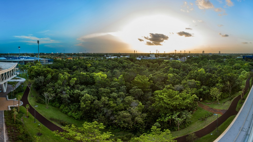 The revival of FIU's Nature Preserve
