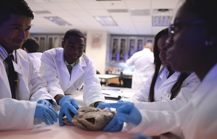 Students inspect diseased organs in the mock morgue