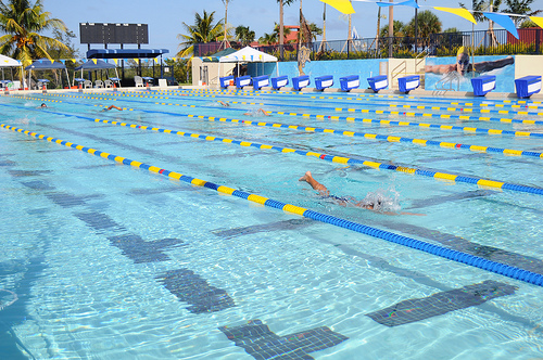Biscayne Bay Aquatic Center News At Fiu Florida International University