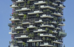 Testing the world's first vertical forest
